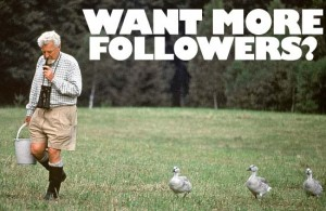 want more followers
